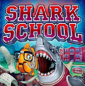 shark-school slot